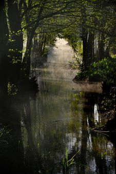 Free Small Water Stream Royalty Free Stock Images - 4555429