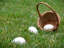 Easter Egg Hunt Stock Image