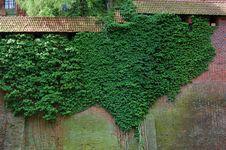 Free Malbork Castle Stock Image - 4558791