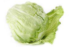 Free Green Salad Stock Image - 4559491