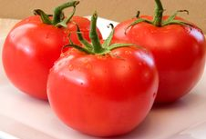 Tomatoes Fresh Royalty Free Stock Photos