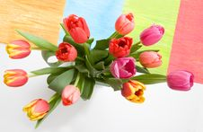 Free Tulips With Funky Background Stock Images - 4560274