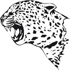 Free Leopard Royalty Free Stock Image - 4560416