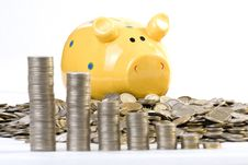 Free Piggy Bank And Coins Chart Stock Images - 4561184