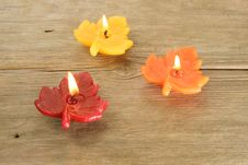 Free Three Leaf Candles Royalty Free Stock Photos - 4561938