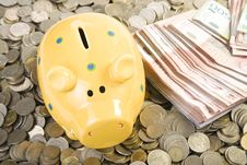 Free Piggy Bank Standing On Coins Royalty Free Stock Photos - 4563118