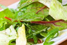 Free Mixed Salad Royalty Free Stock Photos - 4563658