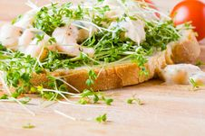 Fresh Prawn And Cress Sandwich Royalty Free Stock Photo