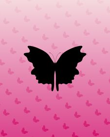 Free Butterfly On Pink Stock Images - 4564094