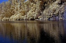 Infrared Photo – Lake, Rock, Reflection And Tree Stock Images