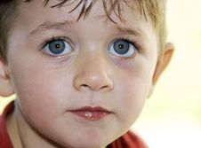 Free Cute Young Boy Royalty Free Stock Image - 4566956