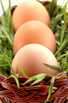 Three Easter Eggs In Basket With Grass Royalty Free Stock Images