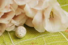 Free Easter Decorations Stock Image - 4567791