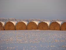Free Straw Bales Royalty Free Stock Images - 4570839