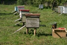 Free Beehives Royalty Free Stock Photography - 4571837