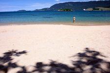 Free Tropical Beach Stock Photo - 4572650