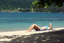 Free Tropical Beach Royalty Free Stock Photo - 4572685