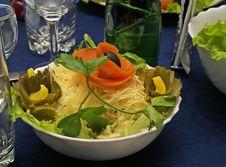 Free Salad Stock Photography - 4578202