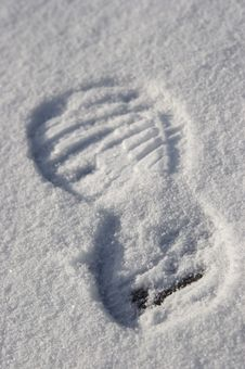Free Print Of Sports Footwear In A Snow Stock Images - 4582324