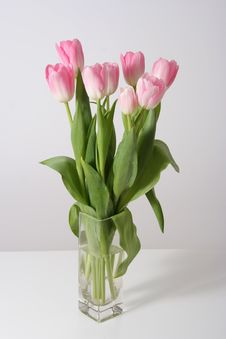 Free Bouquet Pink Tulips Stock Photos - 4582643