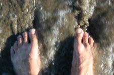 Free Ocean Feet Royalty Free Stock Photo - 4583445