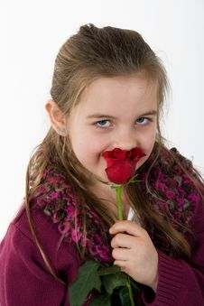 Free Little Girl And The Rose Royalty Free Stock Images - 4583589
