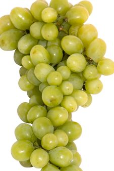 Free Green Grape Stock Photo - 4585740