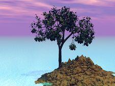 Tree On Island Stock Photos