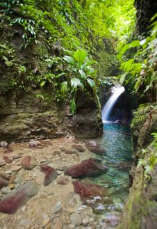 Free Dominica Explorations Royalty Free Stock Photography - 4587017