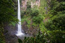 Free Dominica Explorations Stock Photo - 4587030