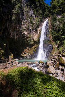 Free Dominica Explorations Royalty Free Stock Photography - 4587077