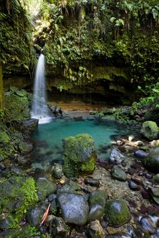 Free Dominica Explorations Stock Photography - 4587092