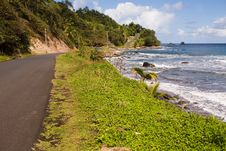 Free Dominica Explorations Stock Photo - 4587210
