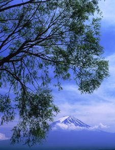 Free Mt Fuji Stock Photos - 4587593