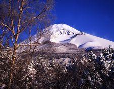 Free Mt Fuji Stock Photography - 4587612