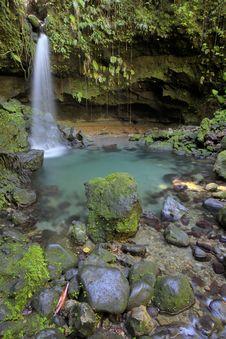 Free Dominica Explorations Stock Photo - 4588020