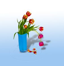 Free Bouquet Of Tulips In A Vase1 Royalty Free Stock Image - 4588276