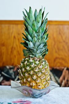 Free Pine-Apple Stock Photos - 4588443