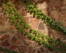 Free Stone Wall Royalty Free Stock Photography - 4591847