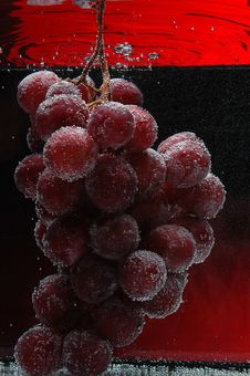 Free Grapes Royalty Free Stock Photography - 4591997