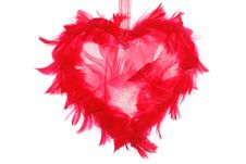 Free Valentin Heart Royalty Free Stock Photography - 4593577