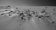 Free Snow Reflections Stock Photo - 4593670