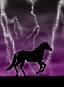 Horse In The Storm Stock Photography