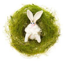 Free White Rabbit In A Green Nest Royalty Free Stock Image - 4596496