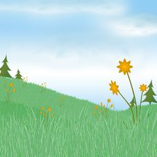 Free Grassy Meadow Ii Stock Image - 4597521