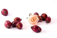 Free Rose Hips And Rose Flower Stock Photography - 4597822