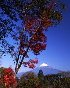 Free Mt Fuji-395 Royalty Free Stock Image - 4598736