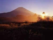 Free Mt Fuji-320 Royalty Free Stock Photo - 4599065