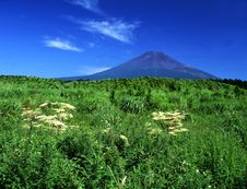 Free Mt Fuji-319 Royalty Free Stock Photo - 4599115