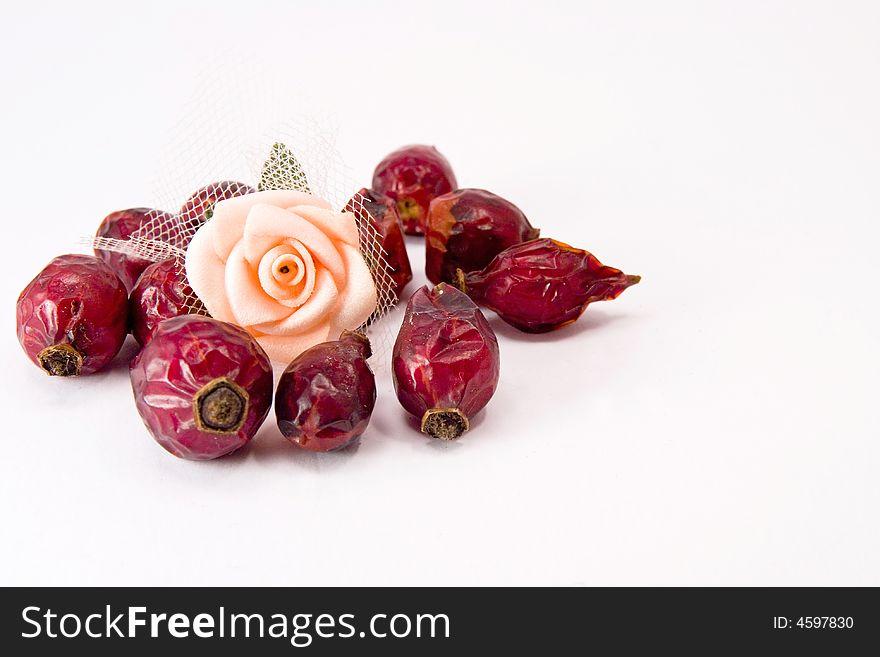 Rose hips and rose flower